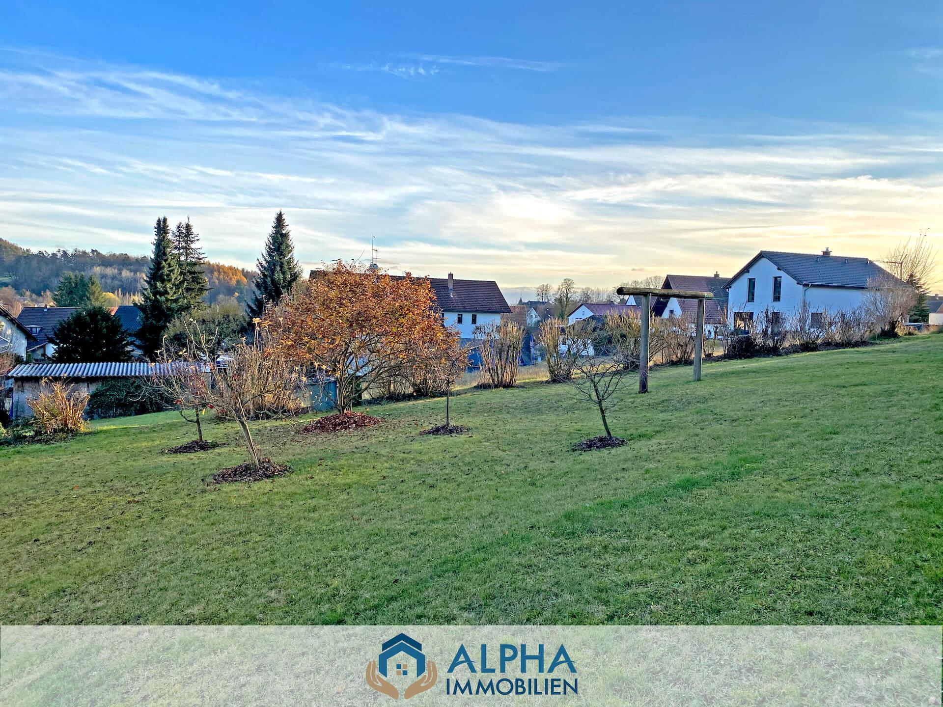 alpha-immobilien-20-8-42